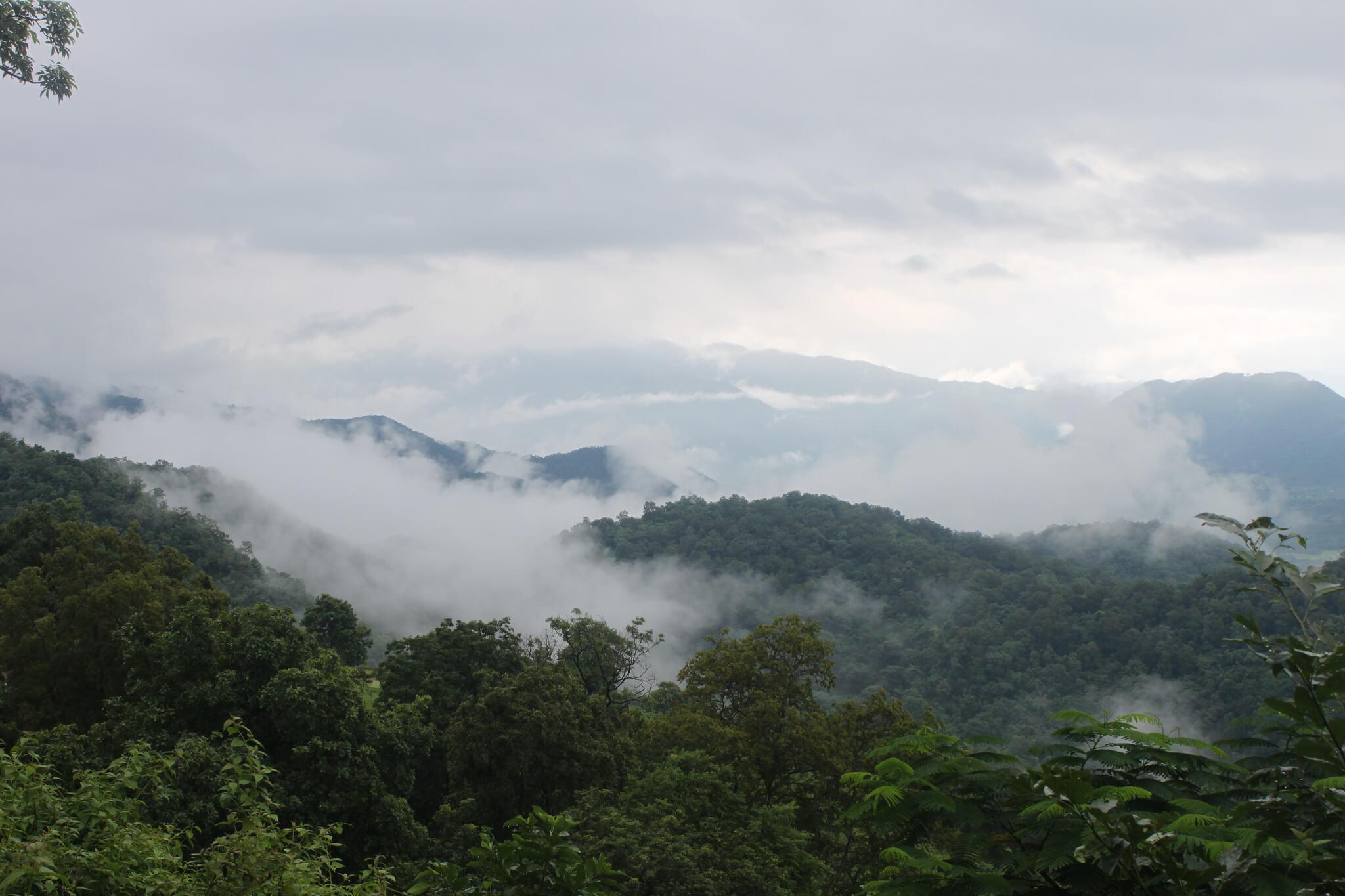 Ananthagiri Hills, Araku Valley & Rushikonda Beach